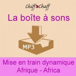 Mise en train - Afrique