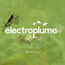 CD BIRDS & GROOVE (Electroplume)