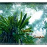 Guyane... sous la canopée