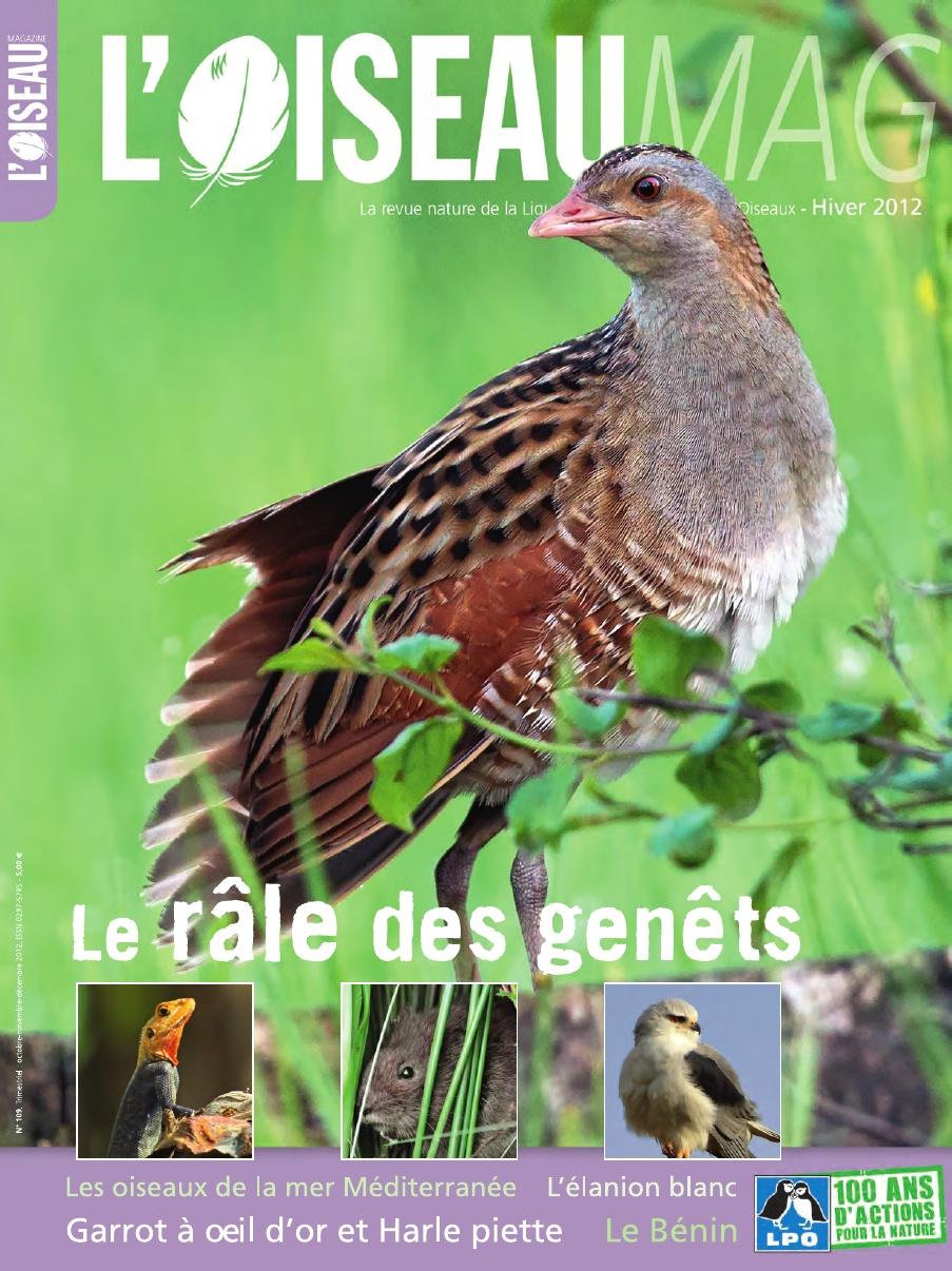 Oiseau Magazine n°109