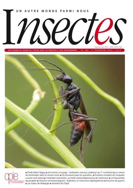 Insectes la revue de l'OPIE