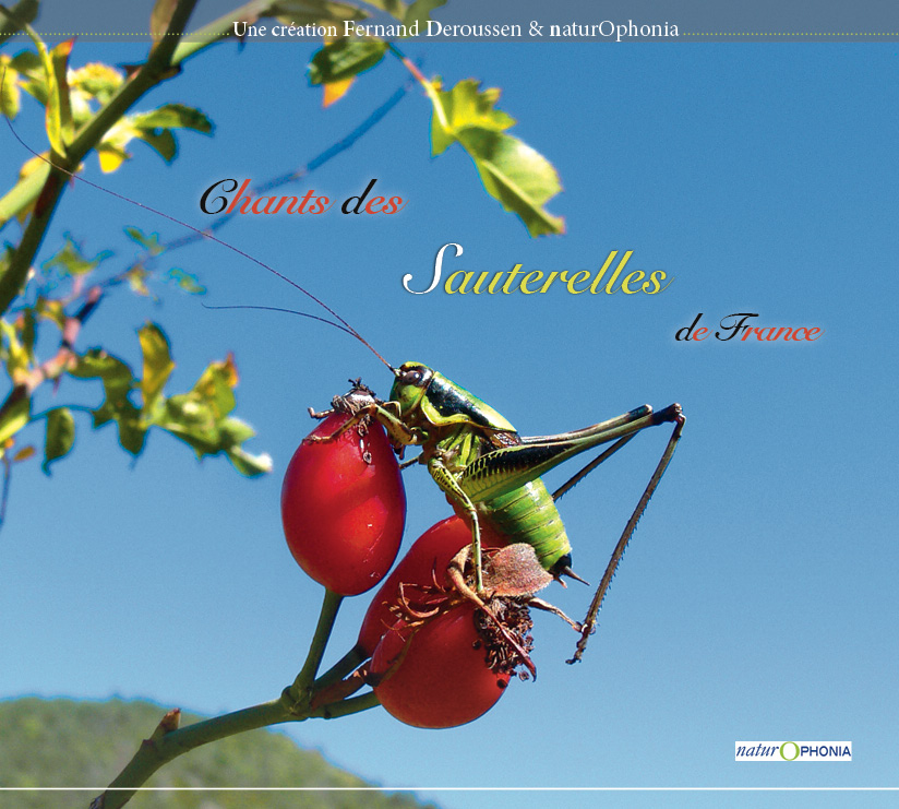 CD Sauterelles