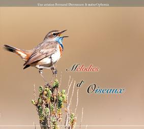 CD Mélodies d'oiseaux