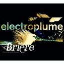 BRIERE, Groove dans les marais (Electroplume)
