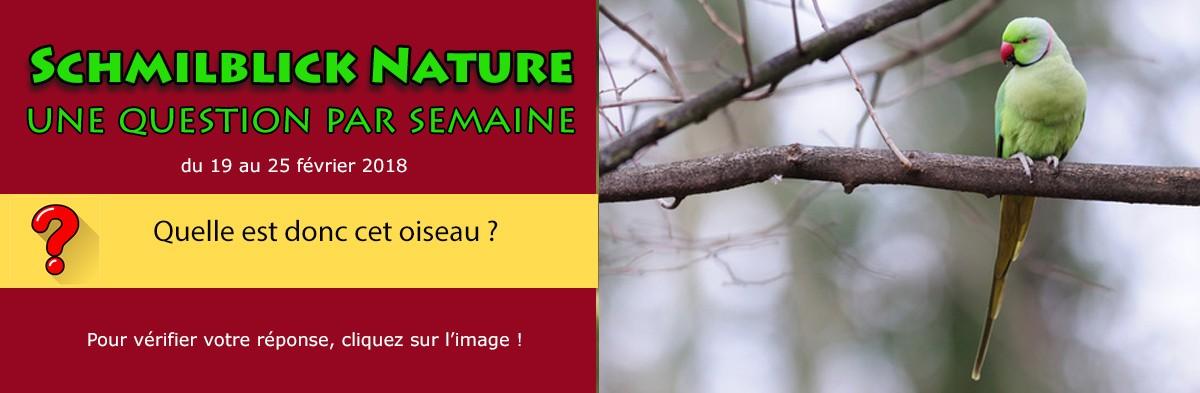 Schmilblick Nature : vérifier votre réponse en cliquant cette image !