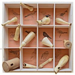 """Coffret 12 nids / Collection """"Oiseaux d'Europe"""""""