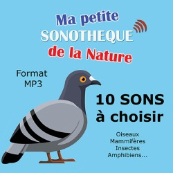 10 NATURAL MP3 SOUNDS TO CHOOSE FROM 128