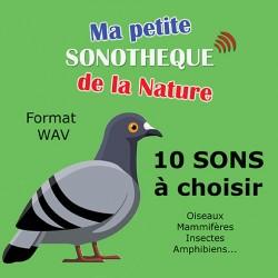 Ma petite sonothèque de la nature 10 SONS AU CHOIX