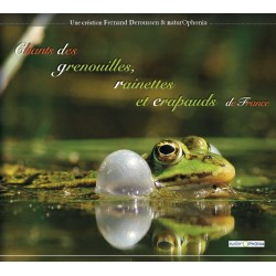 Chants des grenouilles, rainettes et crapauds de France (CD audio)