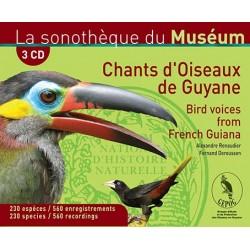 Coffret Chants d'oiseaux de Guyane (3 CD)