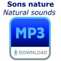 - - Sons nature
