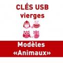 CLÉS USB VIERGES