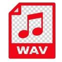 Lot de 10 sons au choix WAV