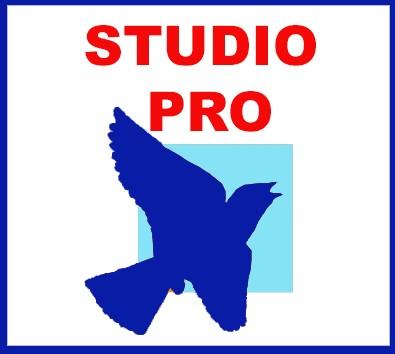 Vente de sons pour l'édition et la muséographie